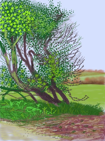 David HockneyThe Arrival of Spring in Woldgate, East Yorkshire in 2011 iPad drawing printed on paper